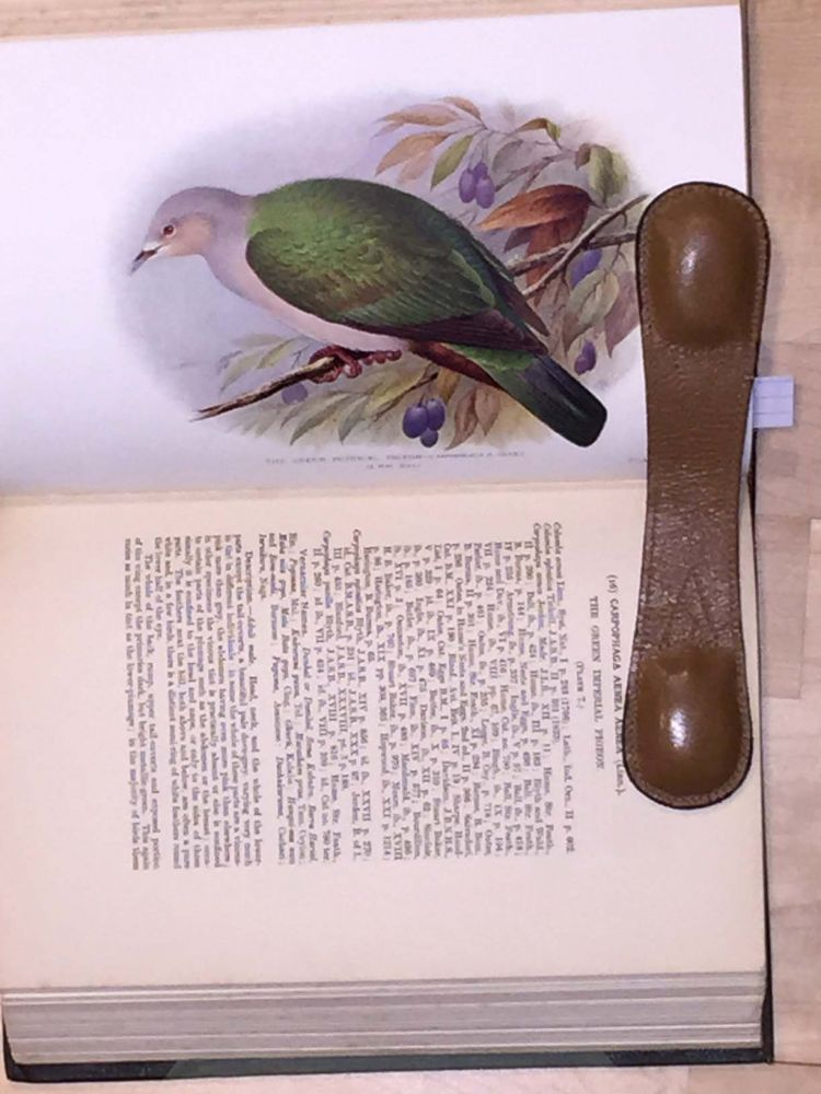 Indian Pigeons and Doves (with prospectus). E. C. Stuart Baker.