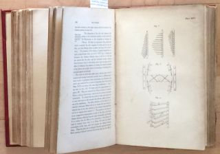 A TREATISE ON THE HUMAN SKELETON INCLUDING THE JOINTS